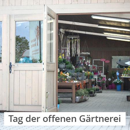 Blumen Rath Neunkirchen Tag der offenen Gärtnerei